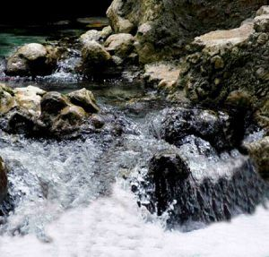 palmar quintana roo cascadas